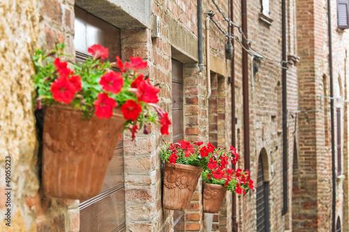 uliczka + donice z kwiatami