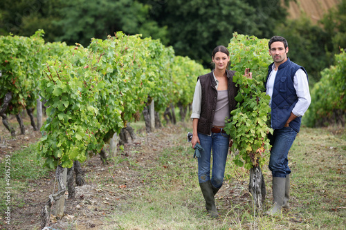 Couple posing in a vineyard