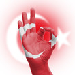 hand OK sign with Turkish flag