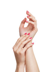 Beautiful female hands isolated on a white background