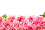 Fototapety beautiful bouquet of pink roses isolated on white