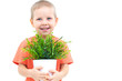 Cute little boy and plant