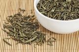Sencha green tea poster