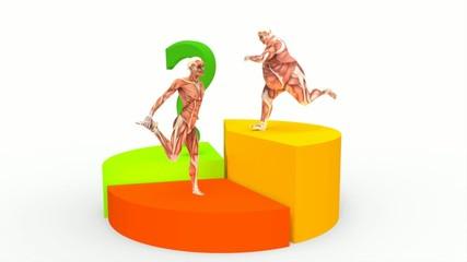 Diagrama con Anatomía Humana