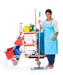 Female Cleaner With Cleaning Equipment