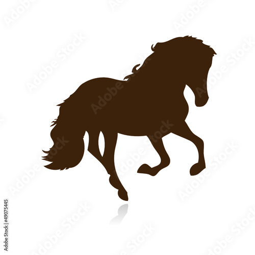 Dressur Pferd Agility