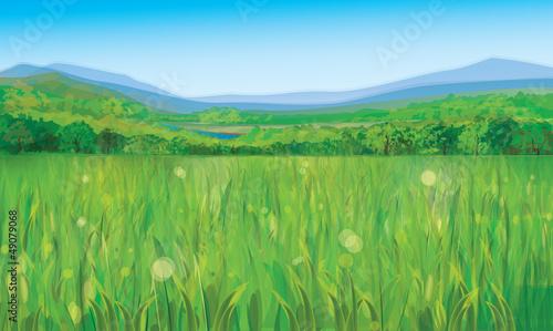 Vector of summer landscape.