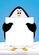penguin and signboard