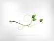 Fototapeta Wzór - Projektować - Kwiat