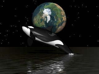 orca and earth