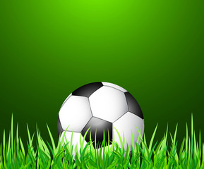 abstract green grass colorfull football vector
