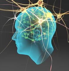 Cabeza con células nerviosa