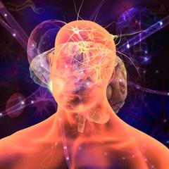 Cuerpo Humano con células nerviosa y cerebro