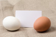 two eggs with a card