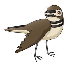 Cartoon Killdeer Faking a Broken Wing