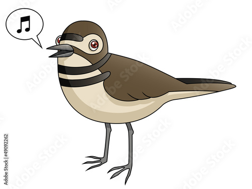 Cartoon Killdeer Singing