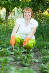 Mature woman working in field