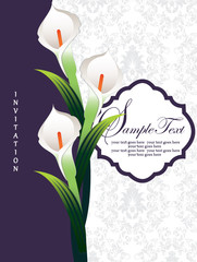 Calla lily, wedding invitation card