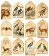 12 vintage tags