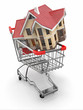 Property market. House in shopping cart