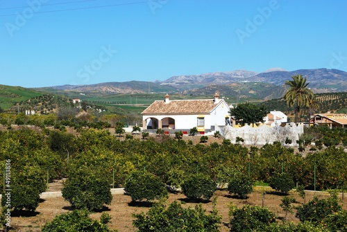 Farmhouse and orange grove, Alora, Spain © Arena Photo UK