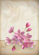 Realistic vector cherry blossom flower arrangement