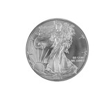 Fine Silver Dollar on White