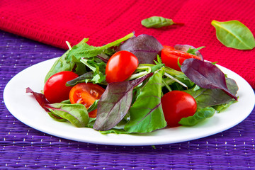 Salad with chard, spinach and tomatoes cherry