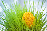 Decorated easter egg in the grass