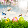 Osterwiese mit Schmetterlingen und Kirschblüten