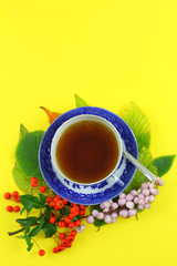 Autumn leaves and cup of tea on yellow background