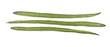 Drumstick Vegetable or Moringa