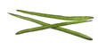 Drumstick Vegetable or Moringa