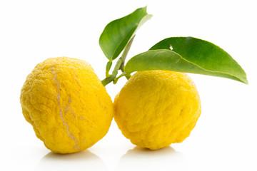 Japanese citron fruits isolated on white background