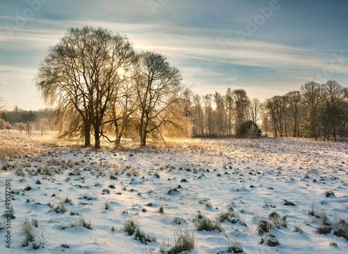 zimowa-natura