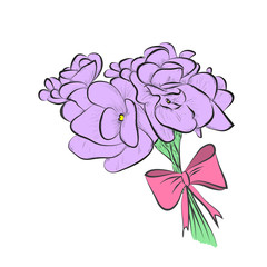 flowers of violet violets