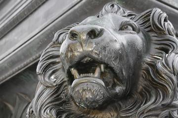 Kopf bayerischer Löwe am Max-Joseph-Denkmal in München