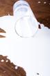 Leinwandbild Motiv Milk spilled from glass
