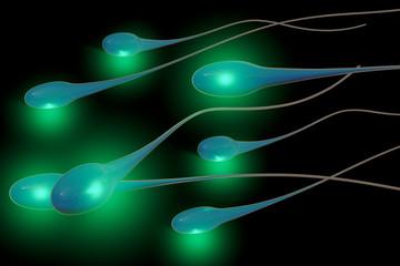 Spermien - 3D Render