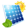 leaves & solar panel