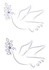 Friedenstaube, Dove of Peace, Barış güvercini
