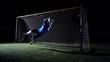Soccer Goalkeeper In Action