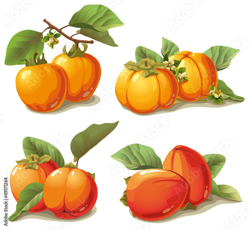 set of ripe persimmon