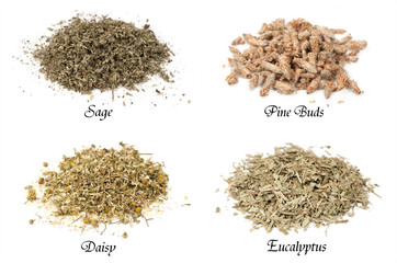 collection of isolated dried herbs