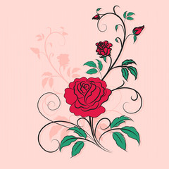 Stylish ornament rose, Valentine's day background. Element for d