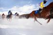 corsa ippica sulla neve