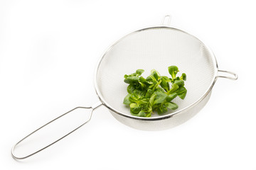 lamb's lettuce on strainer