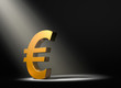 Euro In The Spotlight