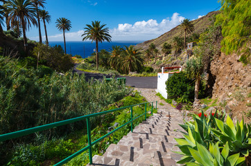 Steps palm trees mountain valley sea, La Gomera island