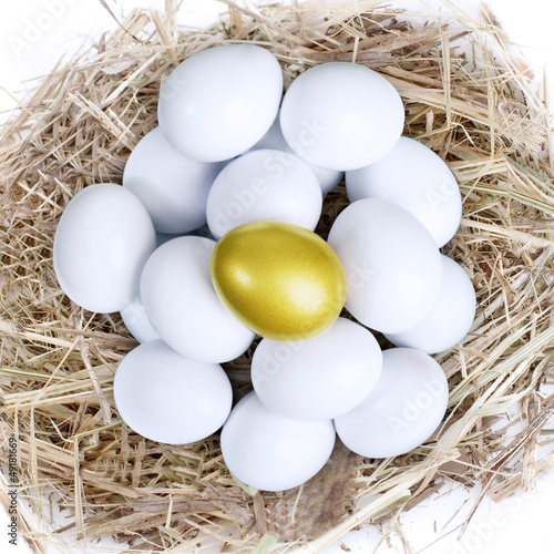 Gold investment eggs nest